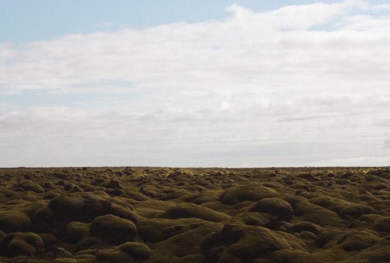 agoraphobia; iceland road; iceland; adventure; sofia podestà; agoraphobia; moss; nature; horizon