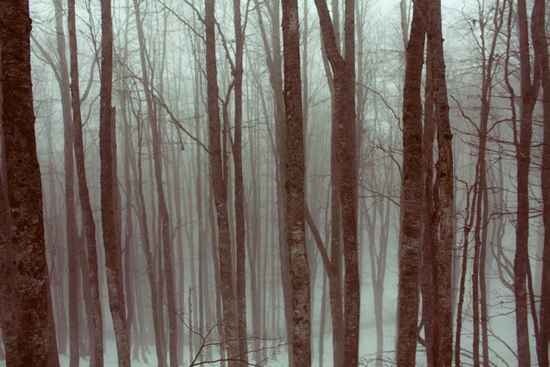 terminillo inverno sci paesaggio