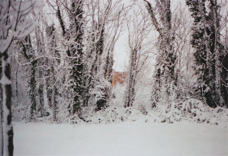 nevicata roma 2018, neve roma, parco delle valli, fotografia italiana, fotografi millennials, fotografe italiane