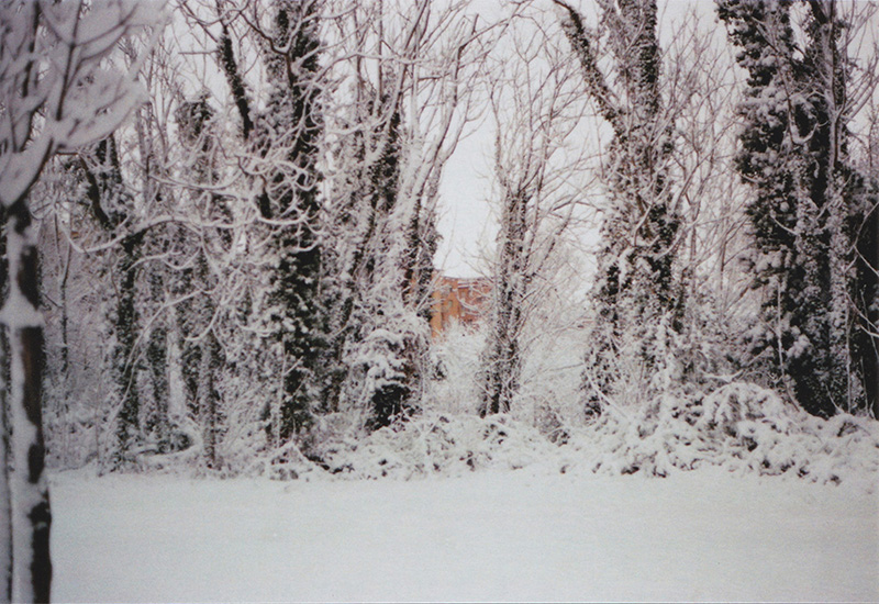 hidden city; paesaggio con neve; roma neve; conca d'oro; alberi innevati; città; montesacro; sofia podestà; sofia ; podestà; sofia podestà photographer; photographer; sofia podestà photography; sofiapodesta; photography;