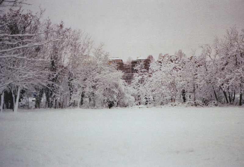 paesaggio con neve; roma neve; conca d'oro; hidden city; alberi innevati; sofia podestà; sofia ; podestà; sofia podestà photographer; photographer; sofia podestà photography; sofiapodesta; photography; città; montesacro;